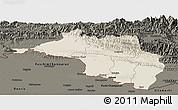 Shaded Relief Panoramic Map of Narayani, darken
