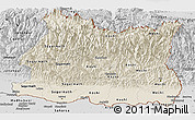 Shaded Relief Panoramic Map of East, desaturated