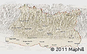 Shaded Relief Panoramic Map of East, lighten