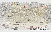 Shaded Relief Panoramic Map of East, semi-desaturated