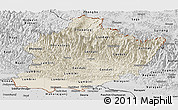 Shaded Relief Panoramic Map of West, desaturated