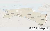 Shaded Relief Panoramic Map of Groningen, lighten