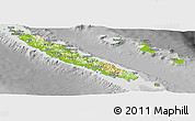 Physical Panoramic Map of New Caledonia, desaturated