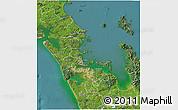 Satellite 3D Map of Auckland