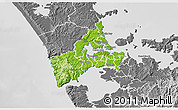 Physical 3D Map of Waitakere, desaturated