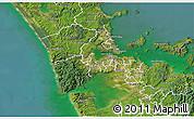 Satellite 3D Map of Waitakere
