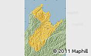 Savanna Style Map of Nelson