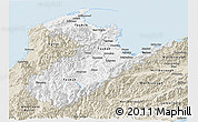 Classic Style Panoramic Map of Nelson