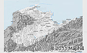 Gray Panoramic Map of Nelson