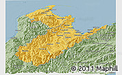 Savanna Style Panoramic Map of Nelson