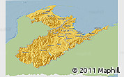 Savanna Style Panoramic Map of Nelson, single color outside
