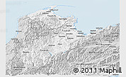 Silver Style Panoramic Map of Nelson