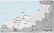 Gray 3D Map of New Plymouth