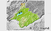 Physical 3D Map of South Wairarapa, desaturated
