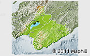 Physical 3D Map of South Wairarapa, semi-desaturated