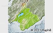 Physical Map of South Wairarapa, semi-desaturated