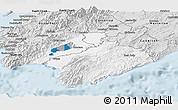 Silver Style Panoramic Map of South Wairarapa
