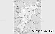 Silver Style 3D Map of Adamwara