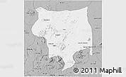 Gray 3D Map of Toro