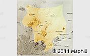 Physical 3D Map of Toro, semi-desaturated