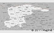 Gray Panoramic Map of Katsina