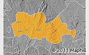 Political Map of Irepodun, desaturated