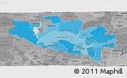 Political Shades Panoramic Map of Niger, desaturated