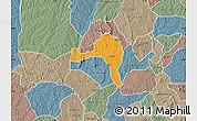 Political Map of Ejigbo, semi-desaturated