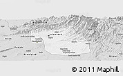 Silver Style Panoramic Map of F.C.T.