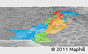 Political Panoramic Map of Pakistan, desaturated