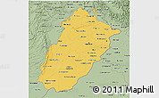 Savanna Style 3D Map of Punjab