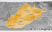 Political Shades Panoramic Map of Punjab, desaturated