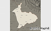 Shaded Relief Map of Sialkot, darken