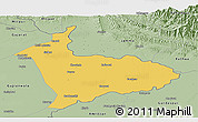 Savanna Style Panoramic Map of Sialkot