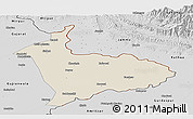 Shaded Relief Panoramic Map of Sialkot, desaturated