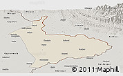 Shaded Relief Panoramic Map of Sialkot, semi-desaturated
