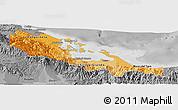 Political Shades Panoramic Map of Bocas del Toro, desaturated