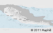 Gray Panoramic Map of Central, single color outside