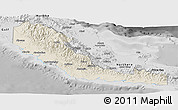 Shaded Relief Panoramic Map of Central, desaturated