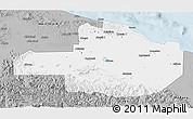 Gray 3D Map of East Sepik