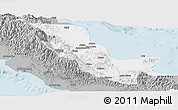 Gray Panoramic Map of Northern