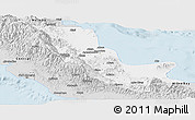 Silver Style Panoramic Map of Northern