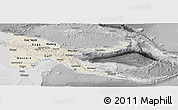 Shaded Relief Panoramic Map of Papua New Guinea, desaturated