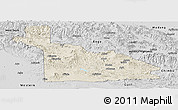 Shaded Relief Panoramic Map of Southern Highlands, desaturated