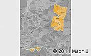 Political Shades Map of Alto Parana, desaturated