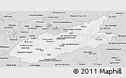 Silver Style Panoramic Map of Caazapa