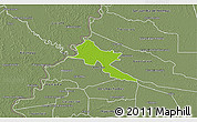 Physical 3D Map of Pilar, semi-desaturated