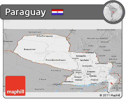 Gray Panoramic Map of Paraguay