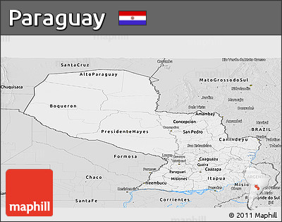 Silver Style Panoramic Map of Paraguay