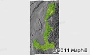 Satellite 3D Map of Region 1, desaturated